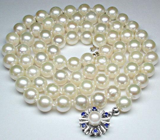 Foto 2, Akoya-Perlenkette; Safir-Perl-Schloss; Weissgold Luxus!, S8826
